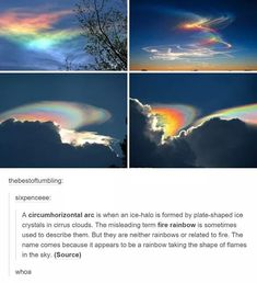 "sixpenceee: ""A circumhorizontal arc is when an ice-halo is formed by plate-shaped ice crystals in cirrus clouds. The misleading term fire rainbow is sometimes used to describe them. All Nature, Amazing Nature, Nature Quotes, Photo Trop Belle, Pretty Pictures, Cool Photos, Beautiful World, Beautiful Places, Amazing Photography"