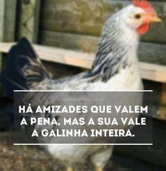 Vale a pena. Leia a mensagem Vale a pena no Mensagens & Amizade. O primeiro site de mensagens de amizade do Brasil.