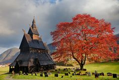 Viking Church An old stave church is framed by an autumn coloured tree and some dramatic weather in Vik, Norway.