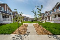 Life in Harbour Landing is a new townhome community located in Regina's beautiful Harbour Landing Townhouse, Landing, Sidewalk, Mansions, House Styles, Life, Beautiful, Terraced House, Manor Houses