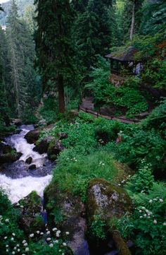 Highest waterfall in Germany, Black Forest.