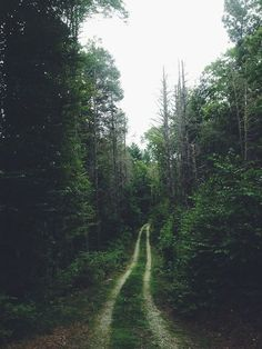 (via Pin by Nathalie Myrberg | {Babes in Boyland} on Nature |...
