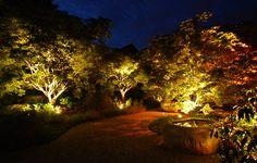 Die Gartenbeleuchtung ist ein Must-have! Immerhin soll das Grün rund um das Haus nicht nur schön aussehen, sondern auch die nötige Sicherheit gewährleistet werden.