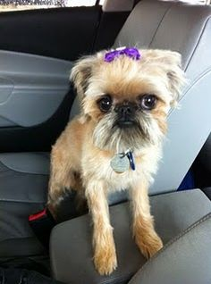 Probably my favorite picture of my baby, Rory.
