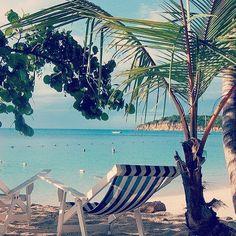 6 weeks til some tropical sunshine