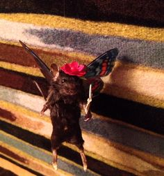 Butterfly Fairy Mouse - Ethically sourced anthropomorphic taxidermy - AND SO CUTE!