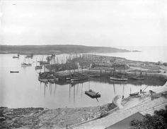 Harbour, Ardglass, Co. Old Photographs, Northern Ireland, Northern Ireland County, Old Photos, Old Pictures