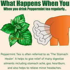 Drop a if this is helpful! Credit To IG : ache food upset upset health upset remedies ache Natural Health Tips, Good Health Tips, Healthy Tips, How To Stay Healthy, Healthy Herbs, Healthy Food, Home Health Remedies, Natural Health Remedies, Herbal Remedies