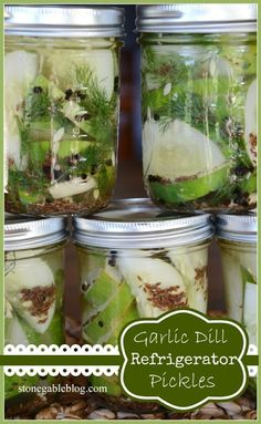 Garlic Dill Refrigerator Pickles - perfect just the way the recipe makes them! (Or double the garlic). Summer Recipes, Great Recipes, Healthy Recipes, Favorite Recipes, Pickeling Recipes, Recipies, Interesting Recipes, Veggie Recipes, Healthy Eats