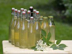 This elderflower cordial recipe without citric acid is very easy to make. It's the perfect way to capture and enjoy the sweet scent of elderflowers in May to July. Elderflower Champagne, Cordial Recipe, Tree Id, Lemon Sorbet, Eton Mess, Wie Macht Man, Best Fragrances, Citric Acid, Food Crafts