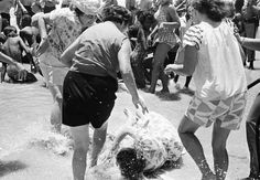A woman falls to the ground after being attacked by white women segregationists, 1964