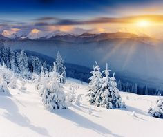 108 Best Smoky Mountain Winter Images Mountains Great