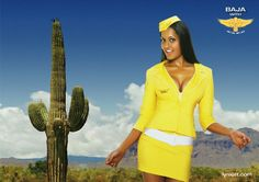 ms stewardess