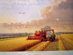 Massey Ferguson 35 and Combine Harvester