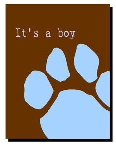 A large selection of new puppy announcements for boy puppies and girl puppies
