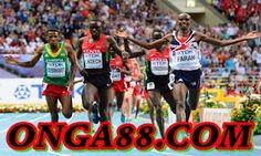 보너스머니♠️♠️♠️  ONGA88.COM  ♠️♠️♠️보너스머니: 보너스머니 ❄️❄️❄️  ONGA88.COM  ❄️❄️❄️ 보너스머니 Basketball Court, Sports, Hs Sports, Sport