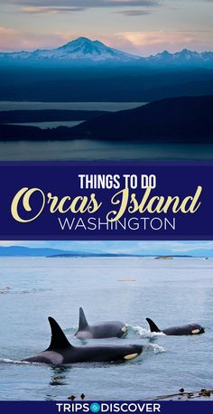 9 Best Things To Do in Orcas Island, Washington Tonga, Washington Things To Do, Washington State, Tacoma Washington, Orca Island Washington, Places To Travel, Places To Go, Lanai Island, Best Island Vacation