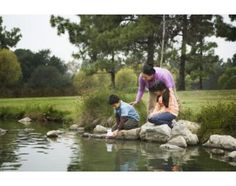 Landscaping Ideas for Around a Large Pond | eHow.com