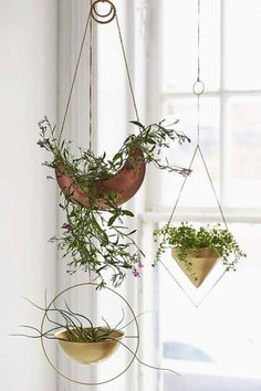 Assembly Home Eos Hanging Planter - Urban Outfitters: I love the idea of plants as indoor decoration! Hanging Planters Assembly Home Eos Hanging Planter Metal Hanging Planters, Copper Planters, Hanging Baskets, Hanging Plants, Indoor Plants, Diy Hanging, Air Plants, Hanging Terrarium, Indoor Herbs