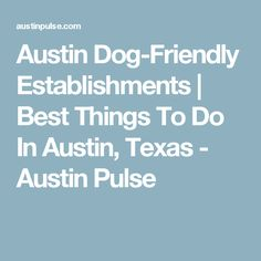 Austin Dog-Friendly Establishments | Best Things To Do In Austin, Texas - Austin Pulse