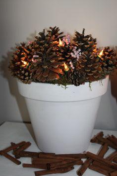 Dennenappels in een grote pot met lichtjes ertussen