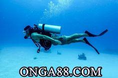 가오푸스♜【 ONGA88.COM 】♜오푸오푸스♜【 ONGA88.오푸스♜【 ONGA88.COM 】♜오푸스COM 】♜오푸스스로챈 혐의로오푸스♜【 ONGA88.COM 】♜오푸스 서울에서 체포오푸스♜【 ONGA88.COM 】♜오푸스된 해운대 엘시티(LCT) 시행사의 실질 소유주 이영복 회장이 11