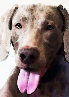 Weimaraner Dog Art - Happy Painting by Sharon Cummings - Weimaraner Dog Art - Happy Fine Art Prints and Posters for Sale