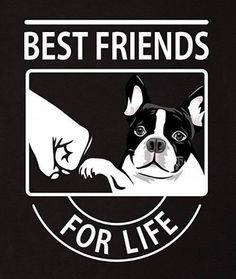 'Best Friends for Life', You and your French Bulldog ❤️❤️❤️