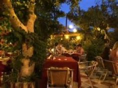 lemon tree alykanas Zante, Zakynthos Island, Greece - Picture of Lemon Tree Restaurant, Alykanas