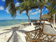 Our Gorgeous White Sand Beach At Sunscape Sabor Cozumel Shaded By Beautiful Palm Trees