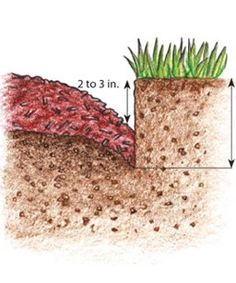 How to have nice crisp edging around flowerbeds. | greengardenblog.comgreengardenblog.com
