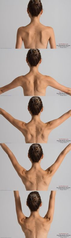 female back muscles skeleton posture back shoulder blades arms neck raise 어깨 등 Human Reference, Female Reference, Anatomy Reference, Photo Reference, Figure Reference, Drawing Reference, Anatomy Back, Body Anatomy, Shoulder Anatomy