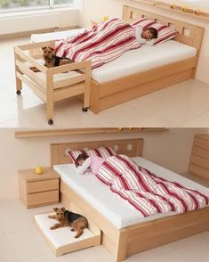 Dog Bed - Do It Yourself - Doggie Accessories Dog House Bed, Dog Furniture, Furniture Stores, Cheap Furniture, Luxury Furniture, Diy Dog Bed, Dog Rooms, Pet Beds, Bunk Beds