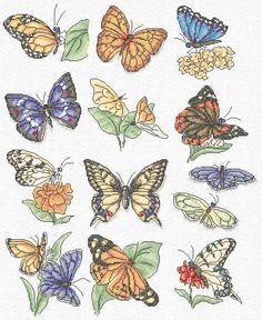 http://www.mariadiazdesigns.com/mdd/charts/WILD0123-butterflies_L.jpg