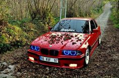 BMW E36 3 series red slammed dapper fall
