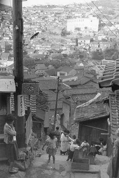 小企画展 井上孝治の写真―軍艦島と長崎 | コレクション展 | 長崎県美術館