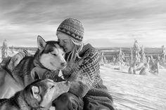 Article Call of the Wild – Meet Tinja and Her Dogs/Finland/Siberian husky Lappland, Husky, Safari, Lapland Finland, Call Of The Wild, Mundo Animal, Winter Beauty, Winter Is Coming, Helsinki