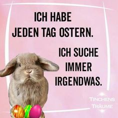 quotes funny quotes german q Quotes About Strength In Hard Times, Quotes About Moving On, Happy Quotes, Funny Quotes, Funny Humor, Easter Bunny Pictures, Really Funny Pictures, Easter Quotes, Savage Quotes