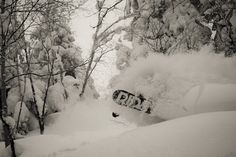 Disappearing in Japan Powder!