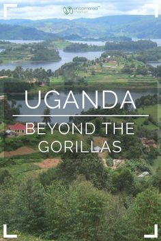 When planning travel to Uganda, most people have gorilla trekking in mind. And while this wildlife experience is not to be missed, Uganda has so much more than just gorillas! This guide includes other destinations and attractions such as Lake Bunyonyi, Nile River white water rafting and a Boda Boda tour of Kampala. Travel in Africa | Uncornered Market Travel Blog