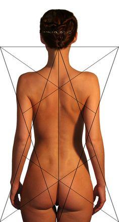 Lines of the female form. #anatomy Заказать вызов с сайта - Компьютерный Сервис В Барселоне и Окрестностях http://kompservis.net/order.html