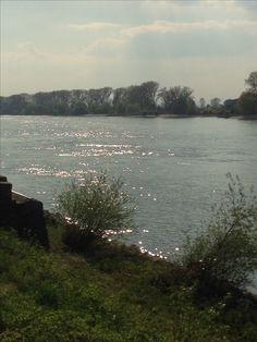 Rhein ^^