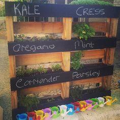 rustic pallet vertical herb garden