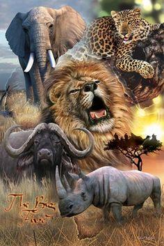 Items similar to Safari Animals (Art On Canvas) on Etsy African Animals, African Safari, African Art, Safari Animals, Animals And Pets, Big Animals, Africa Tattoos, Thinking Day, Mundo Animal