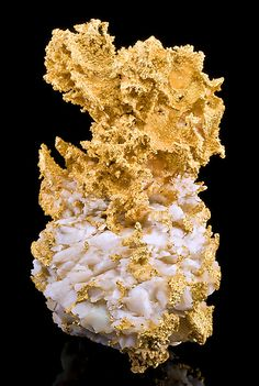 Incredibly beautiful and heavy specimen of Native Gold on bright white Quartz! From the 16 to 1 Mine, Grass Valley, Nevada City District (Grass Valley District), Sierra Co., California.