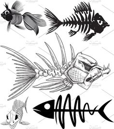 skeleton of five different fish. My collection of fish skeleton. Transparent PNG, Big JPG and vector EPS in archive Skeleton Drawings, Fish Skeleton, Skeleton Tattoos, Fish Drawings, Art Drawings, Fish Bone Tattoo, Bone Tattoos, Desenho New School, Different Fish