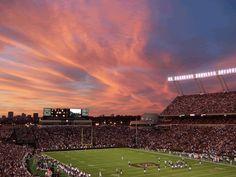 Carolina Gamecocks Williams Brice Stadium gif by Ldoubledizzle   Photobucket