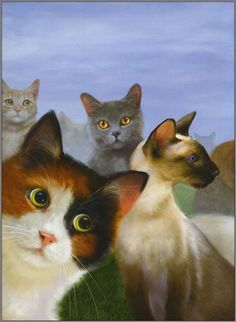 Toffee, Laius the Siamese, Cali and Sala :: by Robert Papp