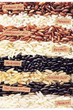 Black and White And Red All Over--an article explaining the characteristics of different types of rice.