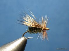 May Means Caddis!